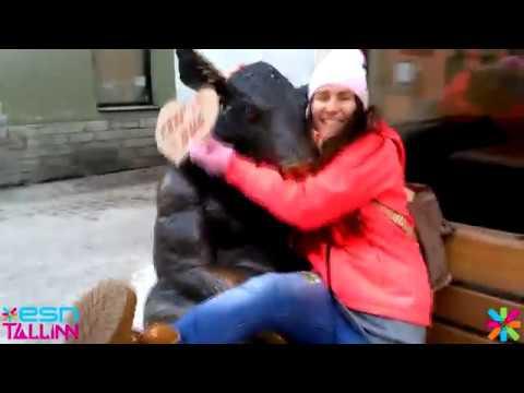 ESN Tallinn Free Hugs Autumn Semester 2016