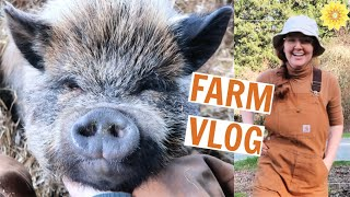 FARM VLOG | BUYING A HOUSE, GARDENING, & PIGS