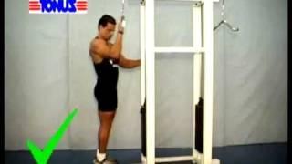 Técnica de execução de exercícios Tríceps