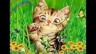 Мяу мяу Кошки и Коты - Детская песня