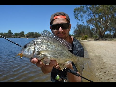 How To Catch Bream On Soft Plastics In The Swan River