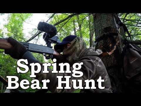 Spring Black Bear Hunting | Northern Ontario