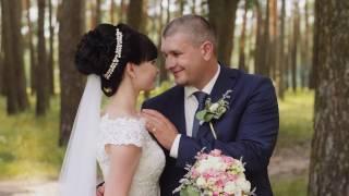 Владимир и Марина [wedding video]
