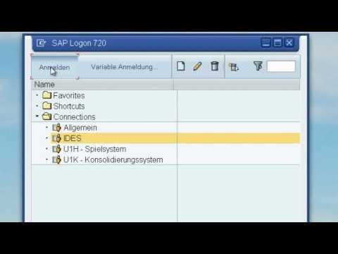 1. Navigation in SAP ERP - Grundlagen