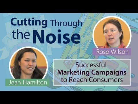 Cutting Through the Noise: Successful Marketing Campaigns to Reach Consumers