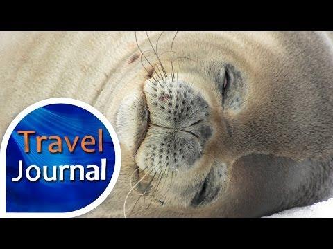 Travel Journal (162) - Na Antarktidě s Karlem Topičem