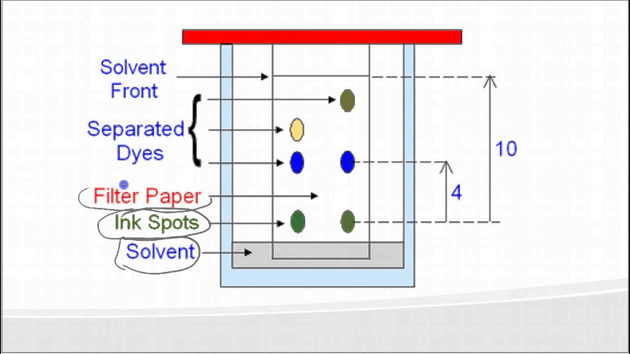 chromatography paper What is paper chromatography it is a method of separating the components of a mixture during the procedure, the mixture will be separated into its individual.