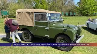 Yvelines | 25 voitures de collection exposées et vendues aux enchères à Versailles
