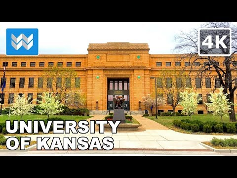 Walking around University of Kansas (KU) in Lawrence, Kansas 【4K】
