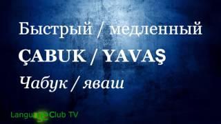 Турецкий язык: Вопросы и Описание! | Урок #18