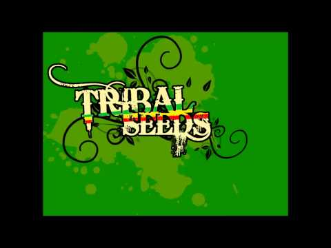 Tribal Seeds - Sun n' Water