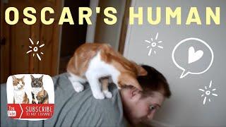 Kitten loves Human
