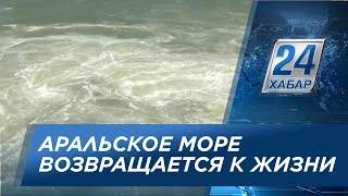 аральское море видео