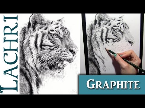 Faber-Castell 9000 graphite pencil review and tiger demo - w/ Lachri