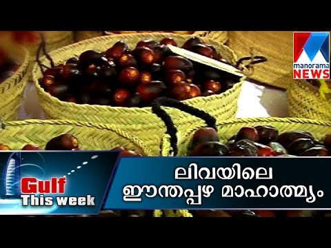 Liwa Date Festival Bask in Arabic tradition, culture | Manorama News | Gulf this Week
