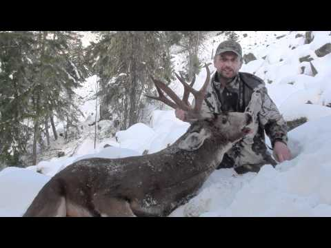Book Class Blacktail Hunting 2nd Kill ( Howtohunt.com,follow On FB)