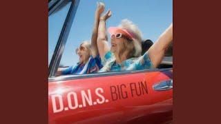 Big Fun (D.O.N.S. Oldschool Revival Mix)