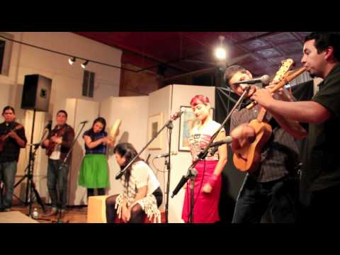 Las Cafeteras - Chicago Tour Highlights (2011)