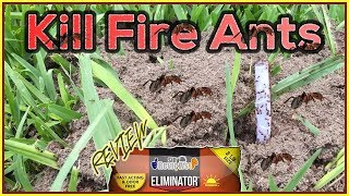 ELIMINATOR KILLER PLUS Fire Ant Granules Review - How To Kill Fire Ants