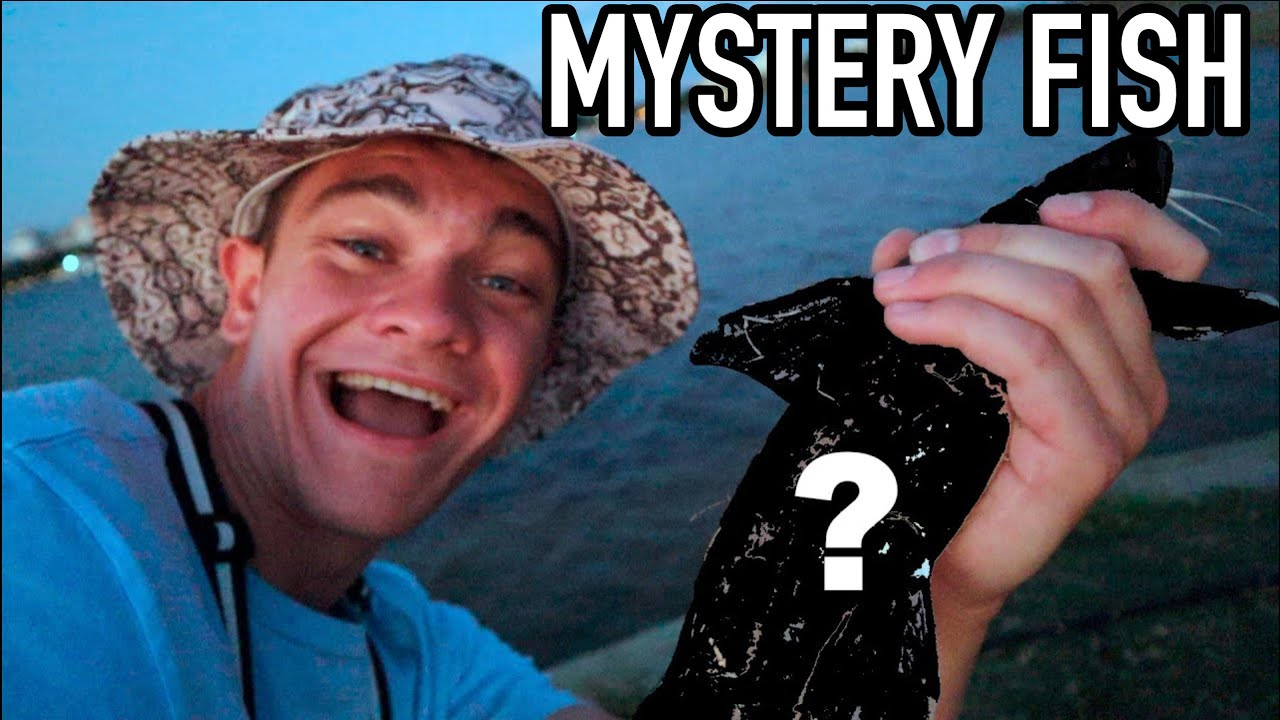 I CAUGHT HIM! *Mystery Fish*