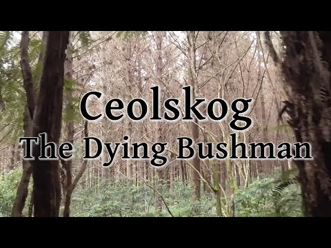 Ceolskog - The Dying Bushman (New Zealand Folk Song; Phil Garland Cover)