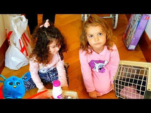 Мисс Кейти отдает котенка Алис! Катя и Макс прощаются с котенком Котенок Мисс Кейти гуляет в парке❤