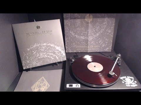 "Downfall of Gaia ""Ethic of Radical Finitude"" LP Stream"