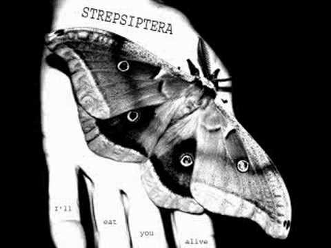 Bleitod-Valentine´s Day [Strepsiptera Outtake]