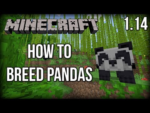How to BREED Pandas in Minecraft 1.14! (Village and Pillage Update)