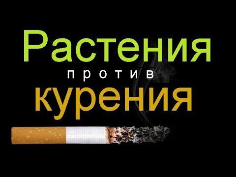 Растения против курения...