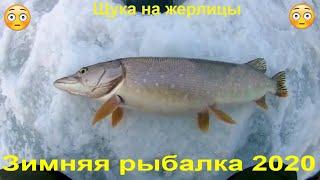 Зимняя рыбалка 2020 ЩуКа На ЖеРлИцЫ В ПерВыЙ ДеНь ВеСнЫ ОкУнЬ На БаЛаНсИр
