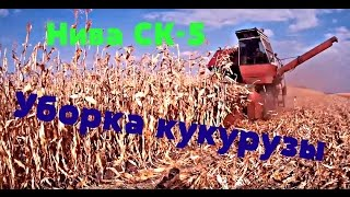 Уборка кукурузы на зерно комбайном Нива СК-5(технология уборки)