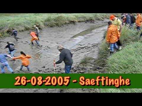 26-08-2005 - Saeftinghe