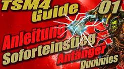 TSM4 Guide: Anleitung und easy Soforteinstieg für Dummies und Anfänger im WoW Goldmaking #1