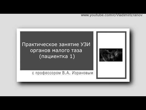 Практическое занятие: УЗИ органов малого таза у женщин (пациентка 1)