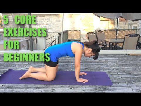 5 Beginner Core Strength Exercises