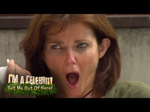 A Cockroach has a Party in Annabel's Mouth | I'm A Celebrity...Get Me Out Of Here!
