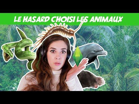 Je fais des animaux qui n'existent pas dans les Sims 4 (et au hasard) 🐿🦛🐬