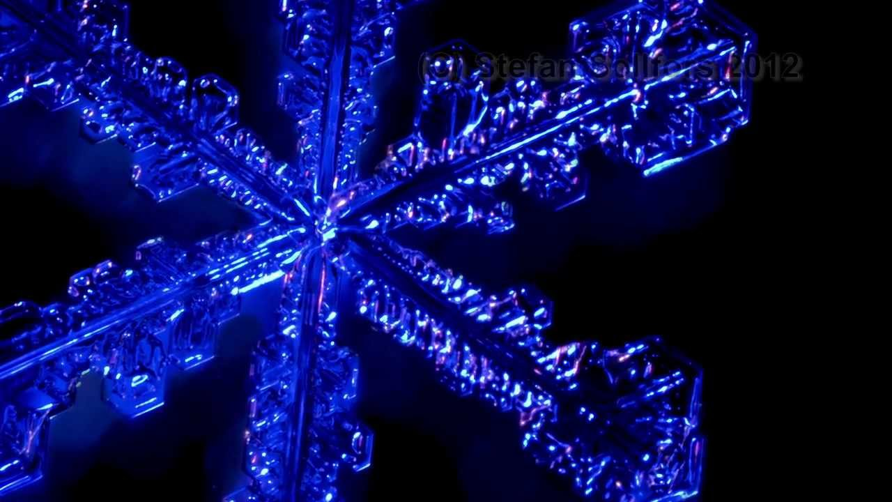 Real Snowflakes Isolated On Black Background Stock Image ... |Real Snowflakes Background