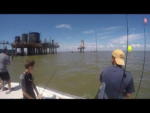 Trout Fishing In Venice, Louisiana