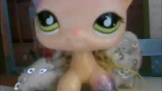 LPS: О моих видео на английском языке на моём канале...| Перевод на русский язык