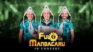 Fulô de Mandacaru - DVD IN CONCERT