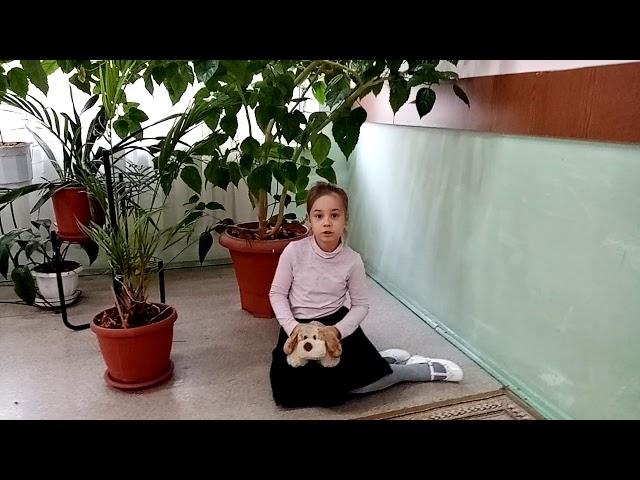 Изображение предпросмотра прочтения – АринаГнездилова читает произведение «Собака» С.А.Есенина
