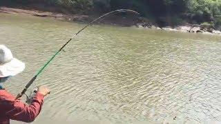 câu cá sông bé ,lần đầu lên cá khủng (T1)