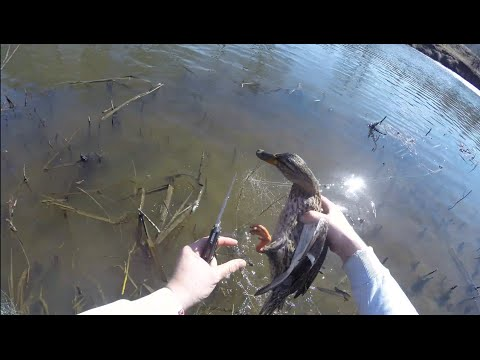 как ловить рыбу на сеть на речке