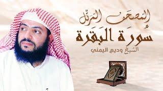 الشيخ وديع اليمني - سورة البقرة | المصحف المرتل