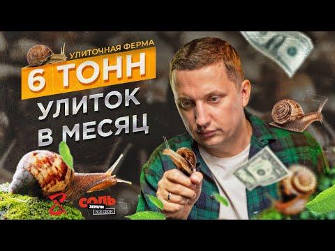 Улиточная ферма в Жмеринке. Как зарабатывают на разведении улиток в Украине? Соль Земли. Все Свои #5