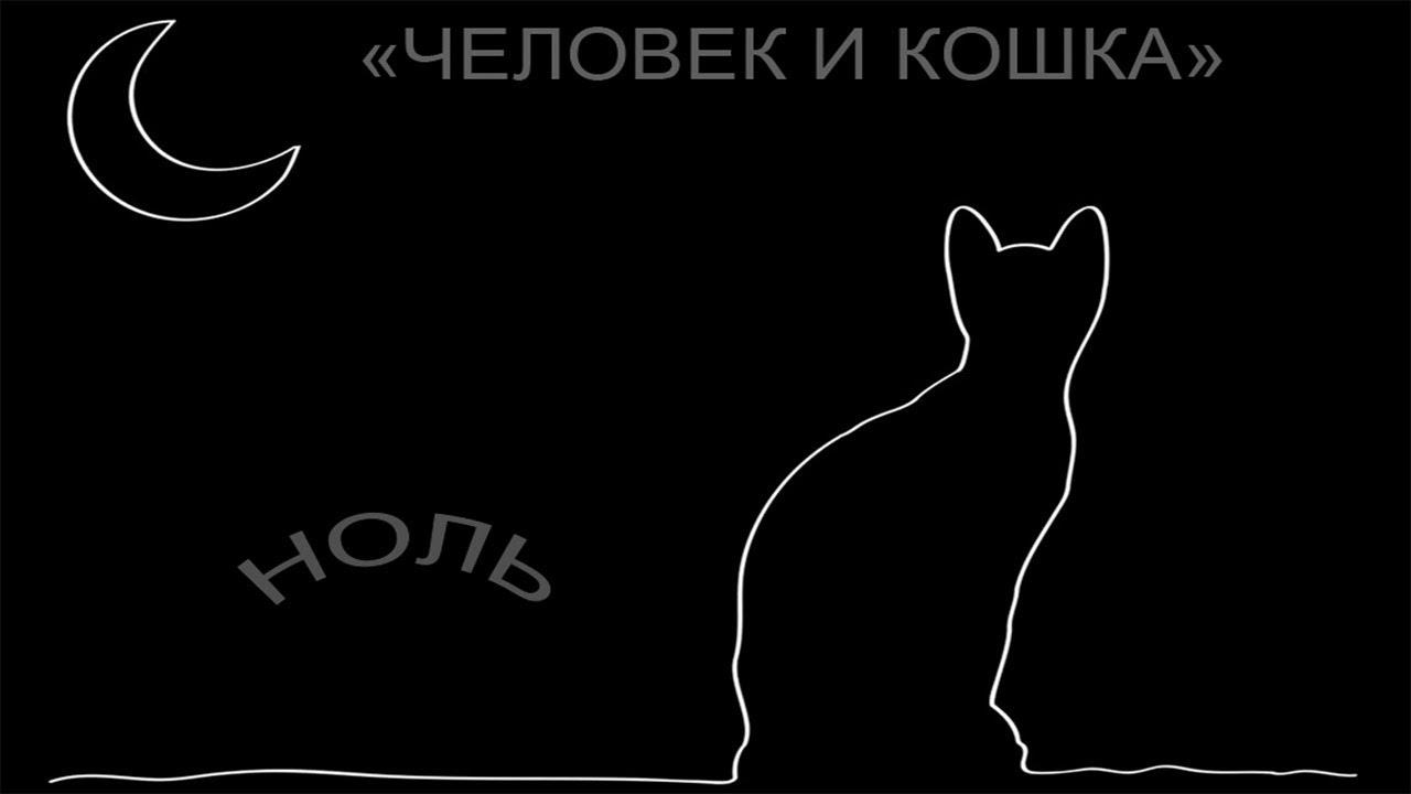 Федор кошка картинки