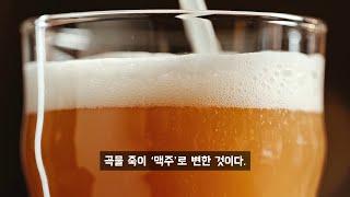 맥주가 인류 문명을 탄생시켰다?
