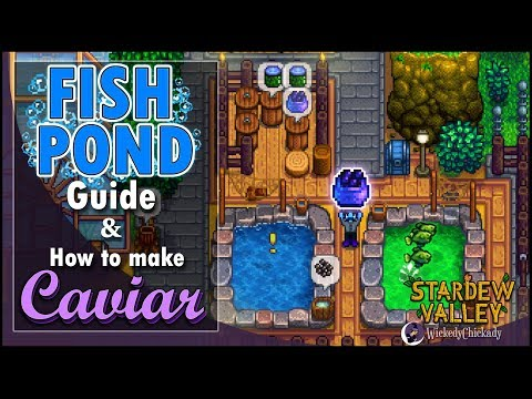 Fish Pond Guide | How To Make Caviar | Stardew Valley 1.4 Update | New Gameplay | New Features